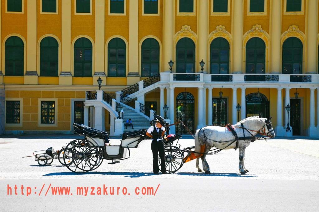 シェーンブルン宮殿の入り口の馬車