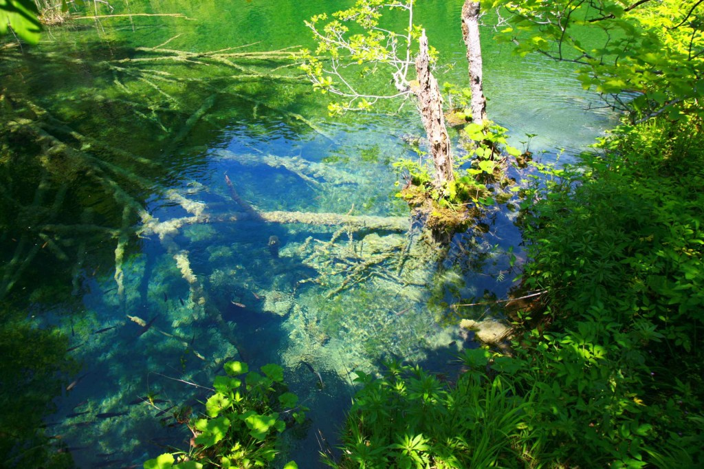 Croatia - Plitvice Lakes National Park013_