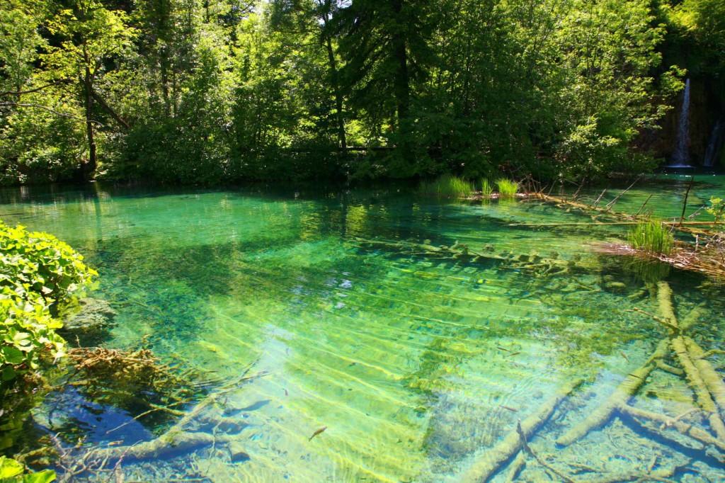 透明度が半端なく綺麗だったブリトヴィッツェ湖
