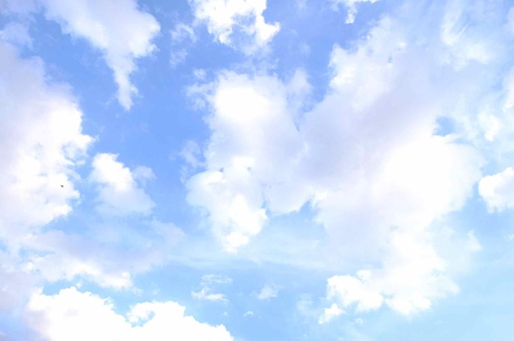 ふと空を見ると、とっても綺麗だった