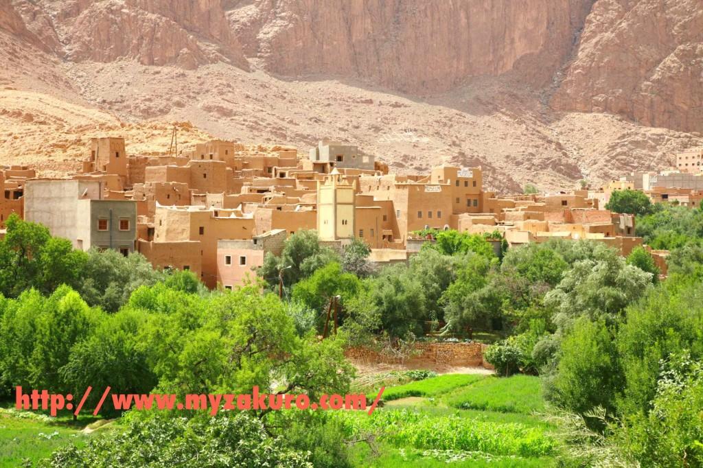 ■モロッコのティネリールに住む「ノリコさん」の宿に行ってみた。