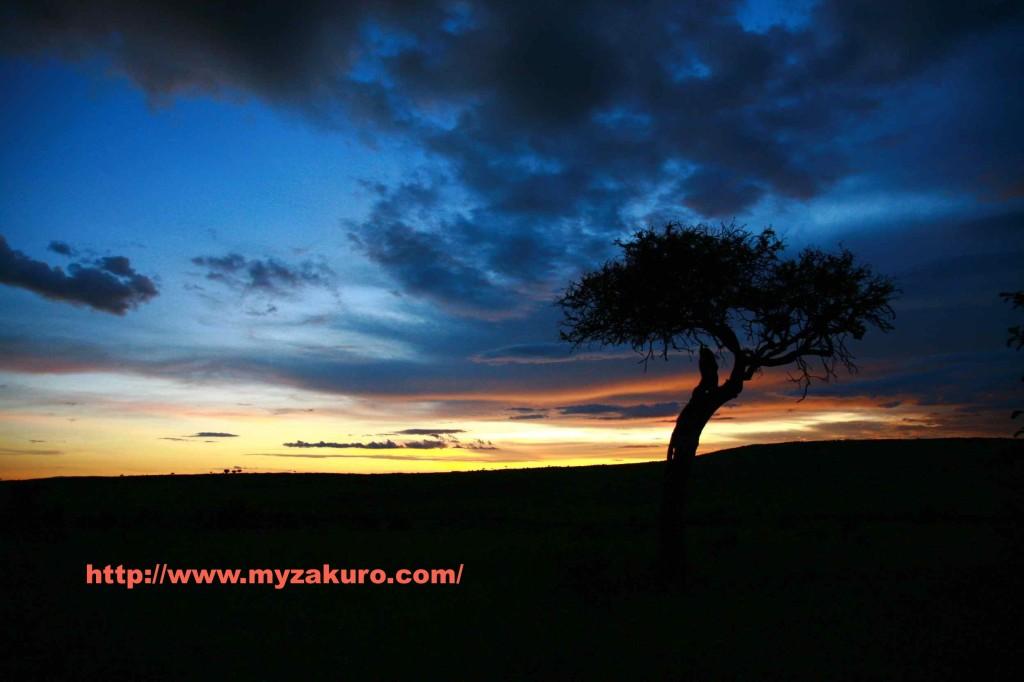 Kenya - Masai Mara006_