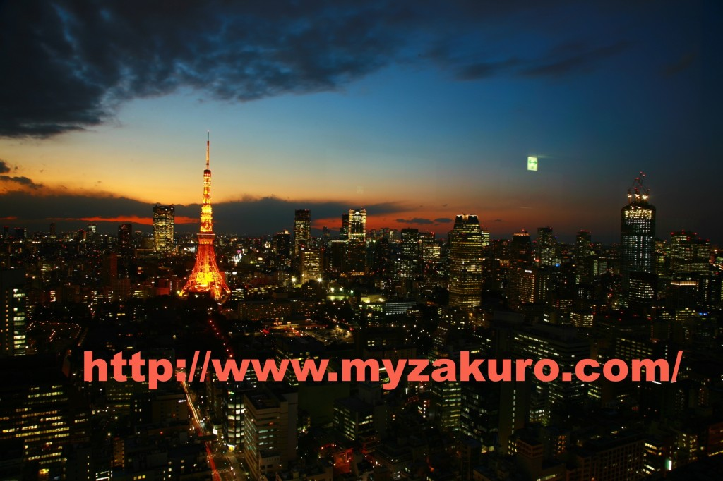 Tokyo Tower010_